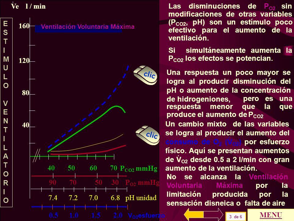 160 120 80 40 P CO2 mmHg 40 50 60 70 VeVe l / min. Ventilación Voluntaria Máxima Los estímulos de la ventilación son variados y con respuestas que pre