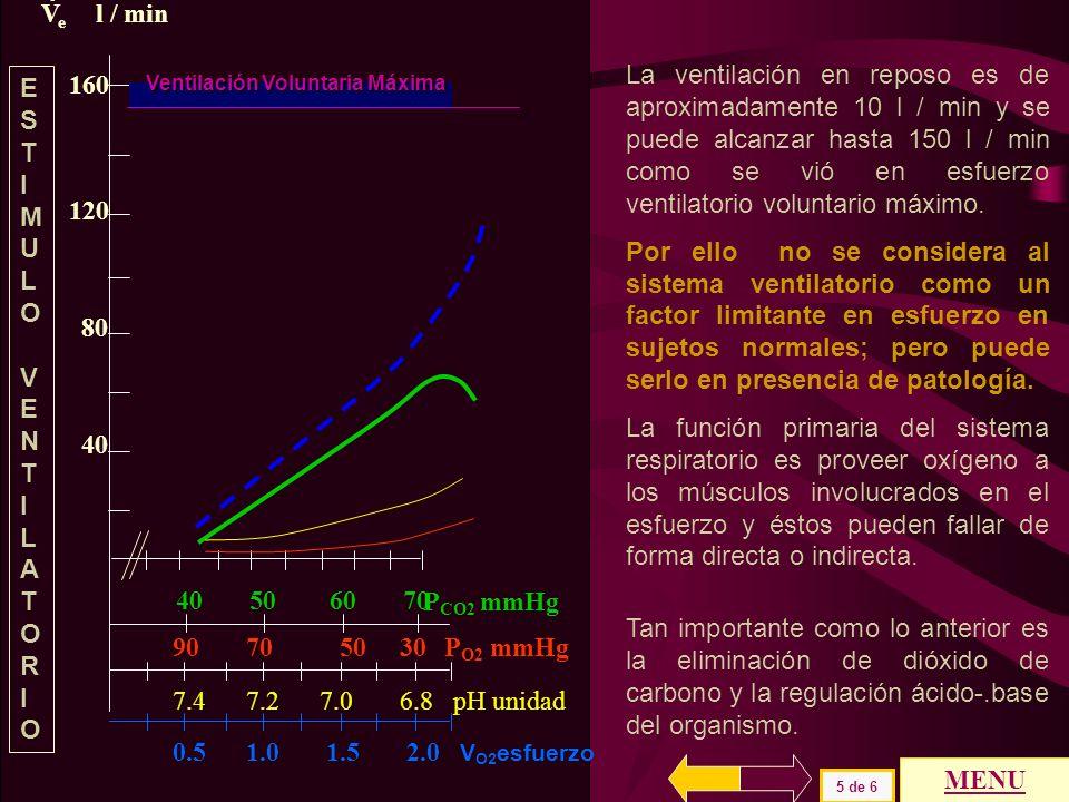 160 120 80 40 P CO2 mmHg 40 50 60 70 VeVe l / min 90 70 50 30 P O2 mmHg 7.4 7.2 7.0 6.8 pH unidad Ventilación Voluntaria Máxima 0.5 1.0 1.5 2.0 V O2 e
