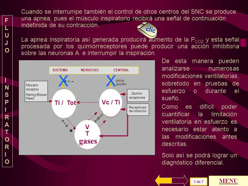 V cc tiempo TiTtot Cuando se corta el nervio vago no llega información aferente de la variación del volumen pulmonar y el Ti es casi el mismo para cua
