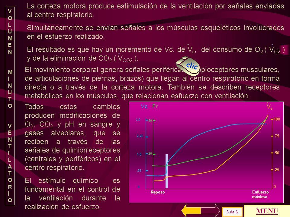 Vc/Ti Ti Te Ttot Ti/Ttot Fr Ve cc/s s s s r/min l/min NORMAL R E R E R E R E R E R E R E 0.37 3 1.7 1.2 2.3 0.8 4 2 0.45 0.6 10 40 7 60 PATOLOGÍA Card
