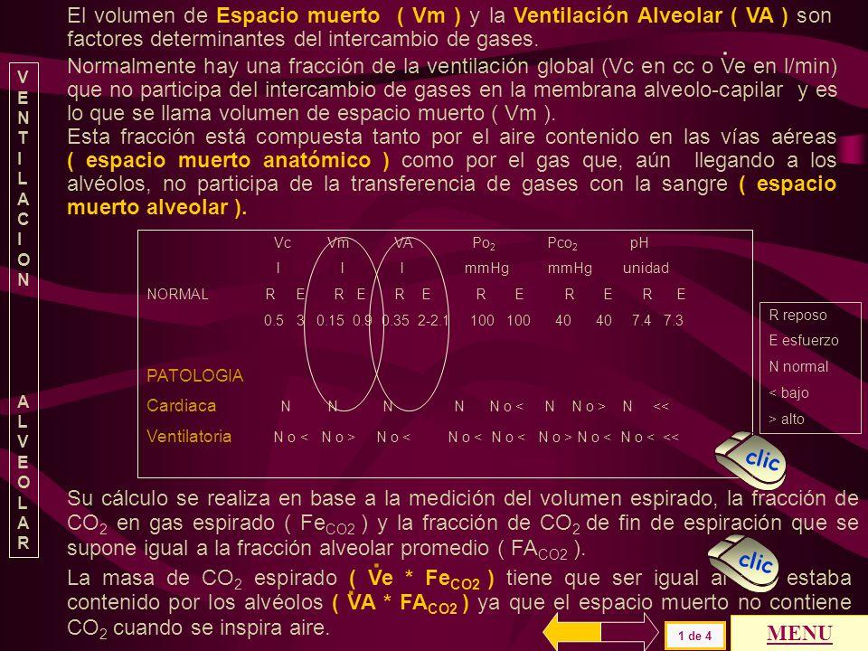 Si bien sería necesario ampliar la información de los procesos básicos referidos a la interrelación entre los sistemas ventilatorio y cardiovascular,