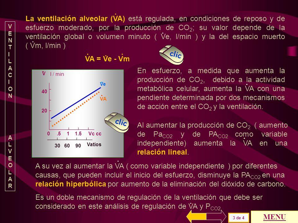 El espacio muerto en valor absoluto o como la relación Vm / Vc (VD/VT en inglés ) se puede representar por la siguiente ecuación Vm = Vc * FA CO2 – Vc