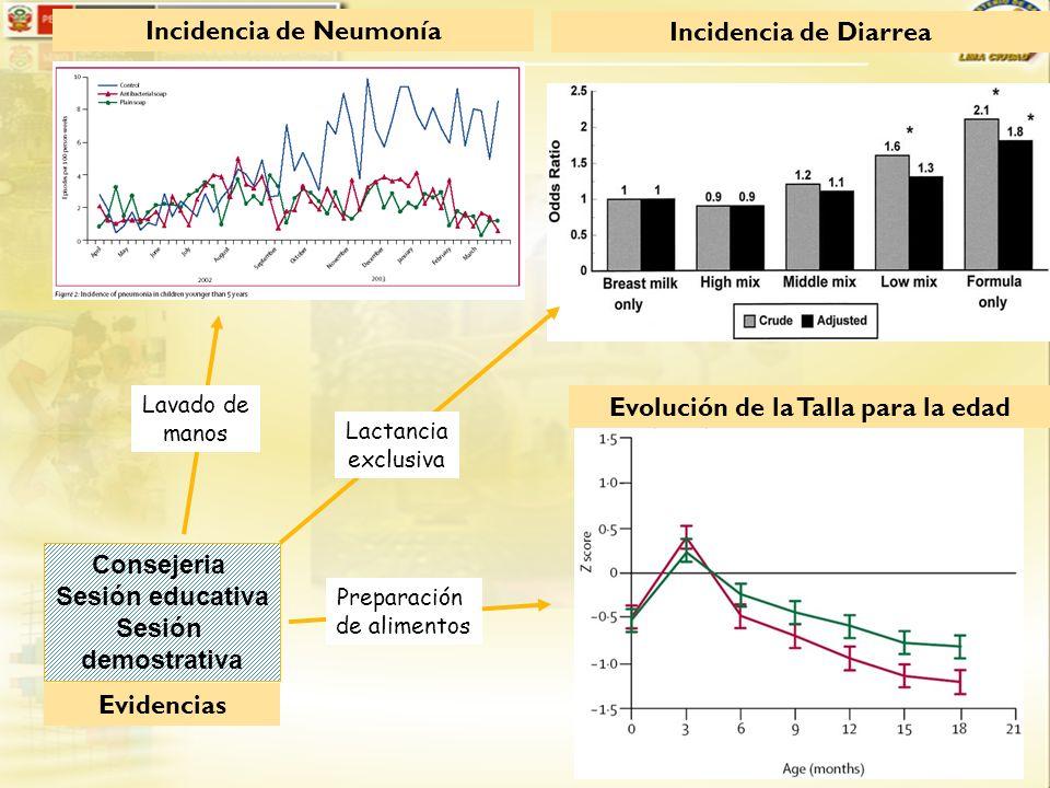 Incidencia de Neumonía Incidencia de Diarrea Evolución de la Talla para la edad Consejeria Sesión educativa Sesión demostrativa Lavado de manos Lactan