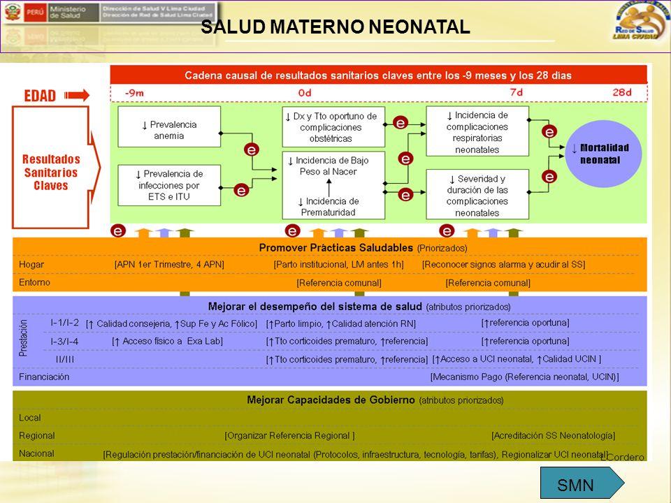 SALUD MATERNO NEONATAL SMN