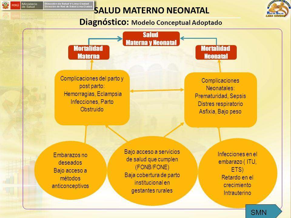Mortalidad Materna Complicaciones del parto y post parto: Hemorragias, Eclampsia Infecciones, Parto Obstruido Bajo acceso a servicios de salud que cum