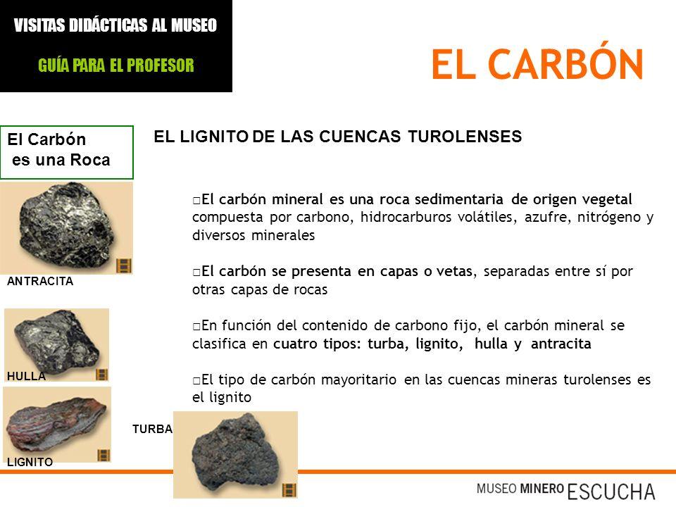 EL CARBÓN EL LIGNITO DE LAS CUENCAS TUROLENSES El Carbón es una Roca El carbón mineral es una roca sedimentaria de origen vegetal compuesta por carbon