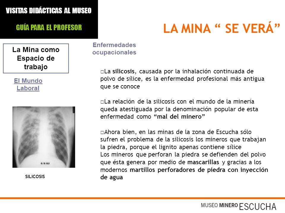 LA MINA SE VERÁ La Mina como Espacio de trabajo El Mundo Laboral Enfermedades ocupacionales La silicosis, causada por la inhalación continuada de polv