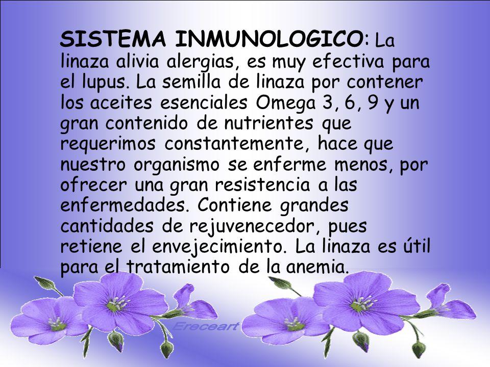 SISTEMA DIGESTIVO: Previene o cura el cáncer de colon. Ideal para gastritis, estreñimiento, acidez estomacal. Lubrica y regenera la flora intestinal.