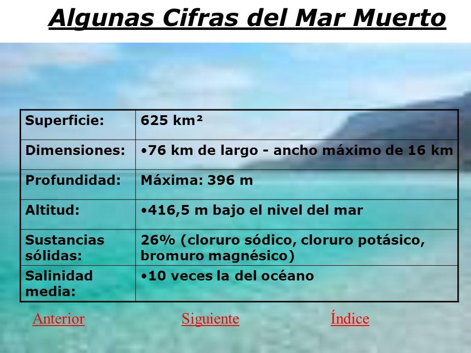 Algunas Cifras del Mar Muerto Superficie:625 km² Dimensiones:76 km de largo - ancho máximo de 16 km Profundidad:Máxima: 396 m Altitud:416,5 m bajo el nivel del mar Sustancias sólidas: 26% (cloruro sódico, cloruro potásico, bromuro magnésico) Salinidad media: 10 veces la del océano AnteriorSiguienteÍndice