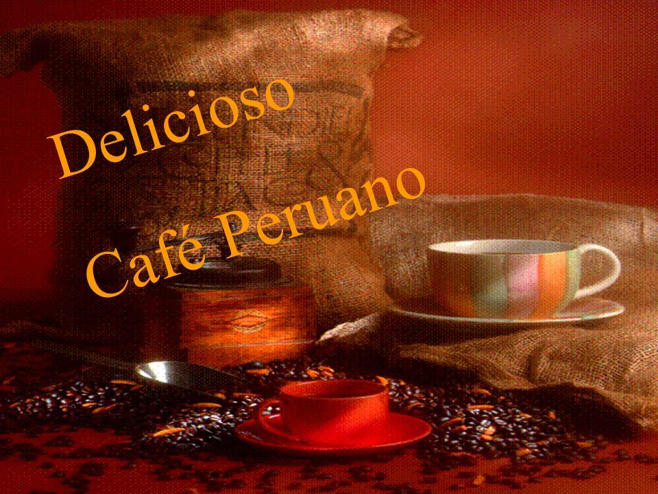 Delicioso Café Peruano