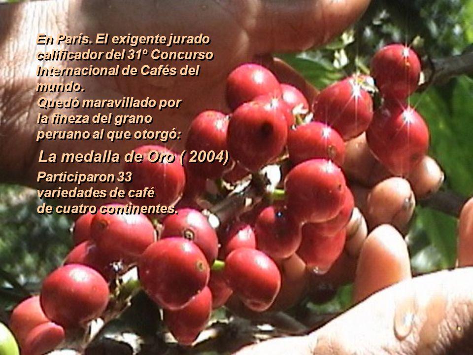 Delicioso En el mundo el café representa el segundo mercado de materias primas. En el mundo el café representa el segundo mercado de materias primas.