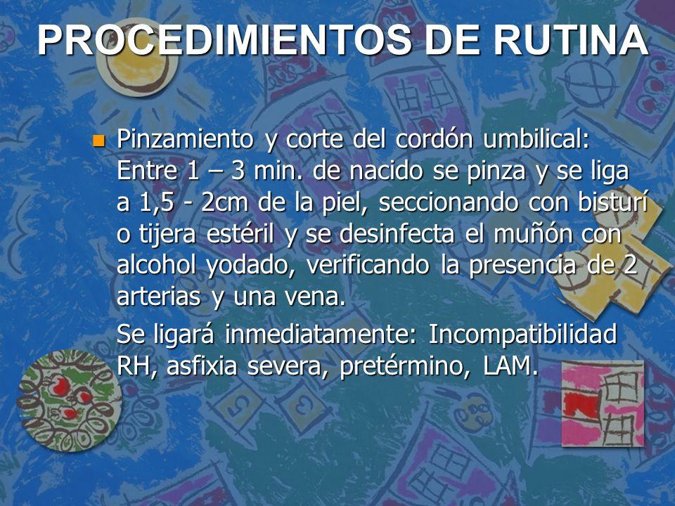 PROCEDIMIENTOS DE RUTINA n Pinzamiento y corte del cordón umbilical: Entre 1 – 3 min.