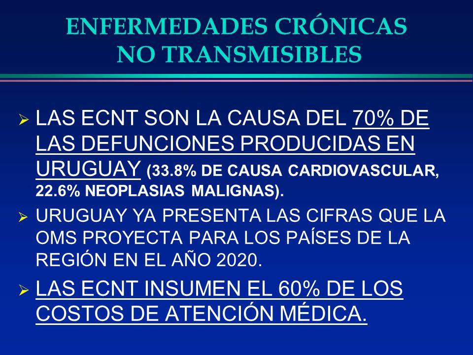 ENFERMEDADES CRÓNICAS NO TRANSMISIBLES PRESENCIA DE FACTORES DE RIESGO DURANTE UN LARGO PERÍODO ANTES DE LA APARICIÓN DE ENFERMEDAD.