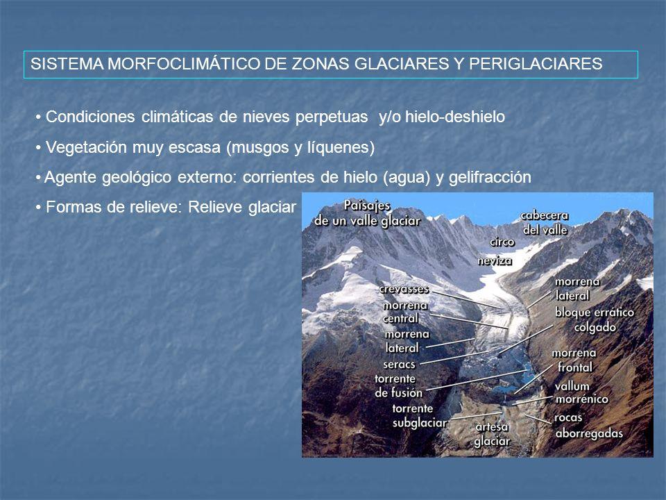 SISTEMA MORFOCLIMÁTICO DE ZONAS GLACIARES Y PERIGLACIARES Condiciones climáticas de nieves perpetuas y/o hielo-deshielo Vegetación muy escasa (musgos