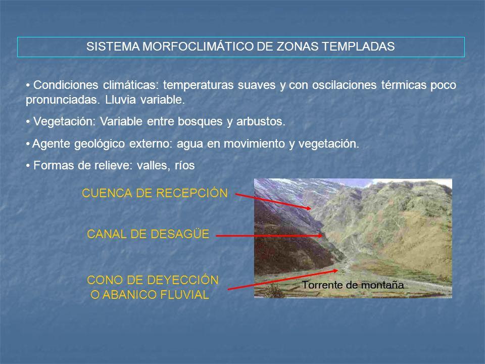 SISTEMA MORFOCLIMÁTICO DE ZONAS TEMPLADAS Condiciones climáticas: temperaturas suaves y con oscilaciones térmicas poco pronunciadas. Lluvia variable.