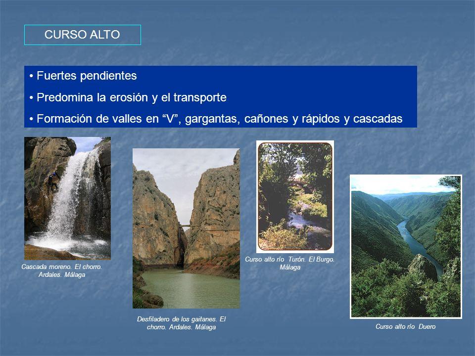 CURSO ALTO Fuertes pendientes Predomina la erosión y el transporte Formación de valles en V, gargantas, cañones y rápidos y cascadas Cascada moreno. E