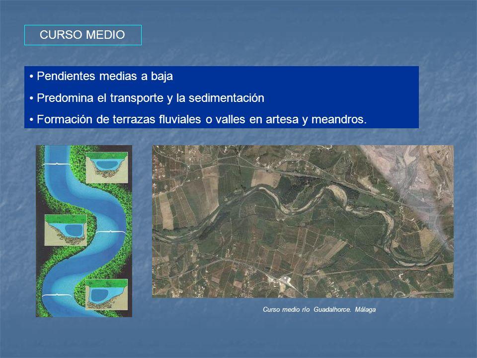 CURSO MEDIO Pendientes medias a baja Predomina el transporte y la sedimentación Formación de terrazas fluviales o valles en artesa y meandros. Curso m