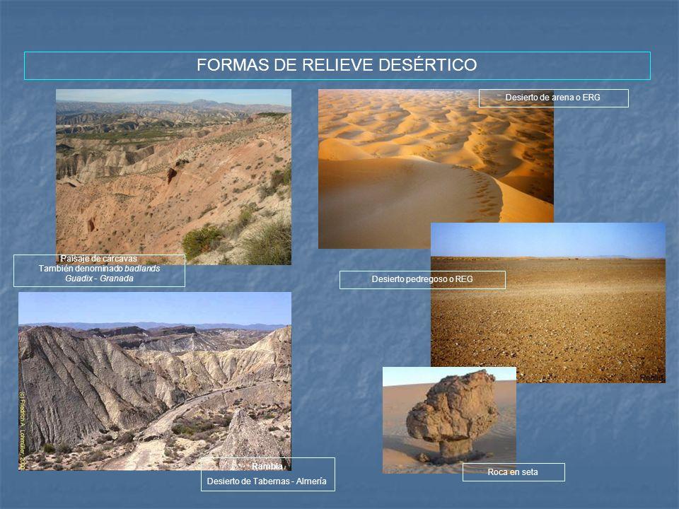 FORMAS DE RELIEVE DESÉRTICO Paisaje de cárcavas También denominado badlands Guadix - Granada Rambla Desierto de Tabernas - Almería Desierto pedregoso