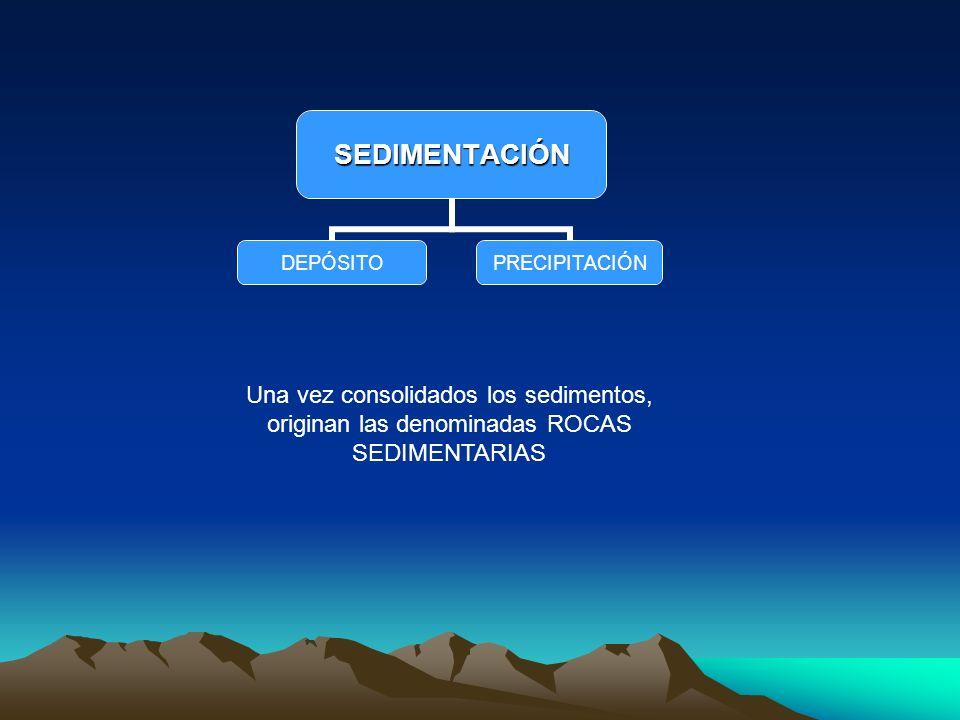 SEDIMENTACIÓN DEPÓSITOPRECIPITACIÓN Una vez consolidados los sedimentos, originan las denominadas ROCAS SEDIMENTARIAS