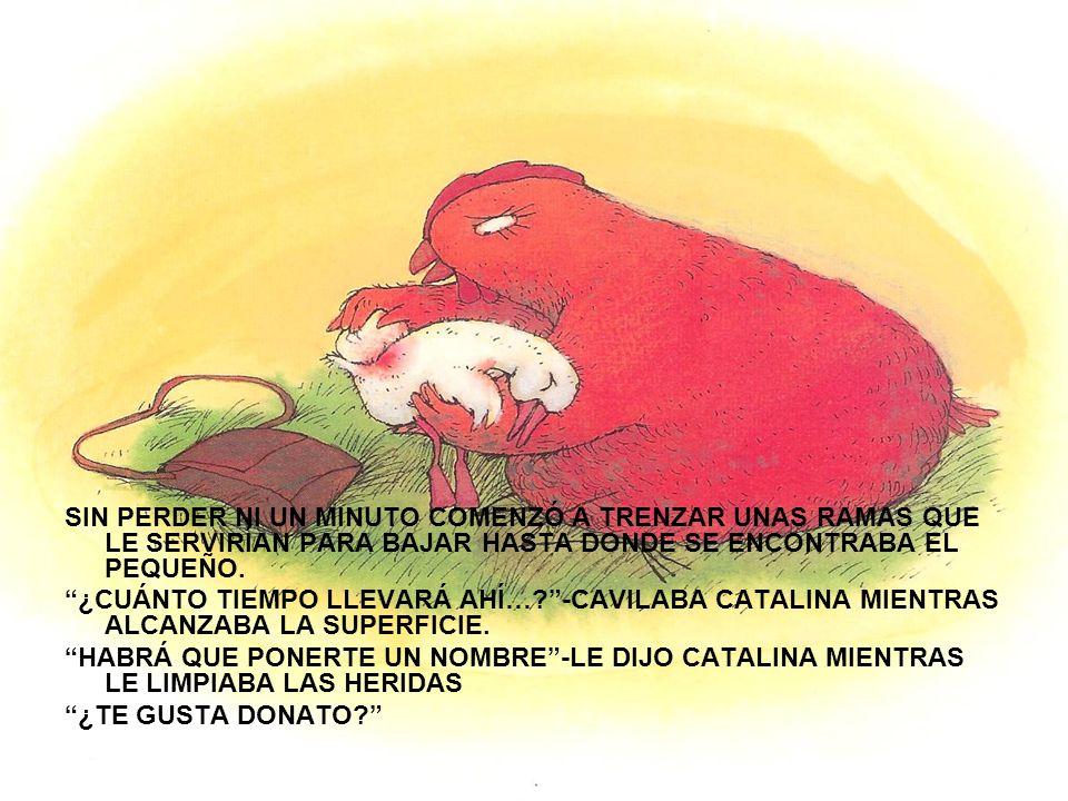 CATALINA LA GALLINA BUSCÓ COMIDA CON LA QUE PODER ALIMENTARLO.