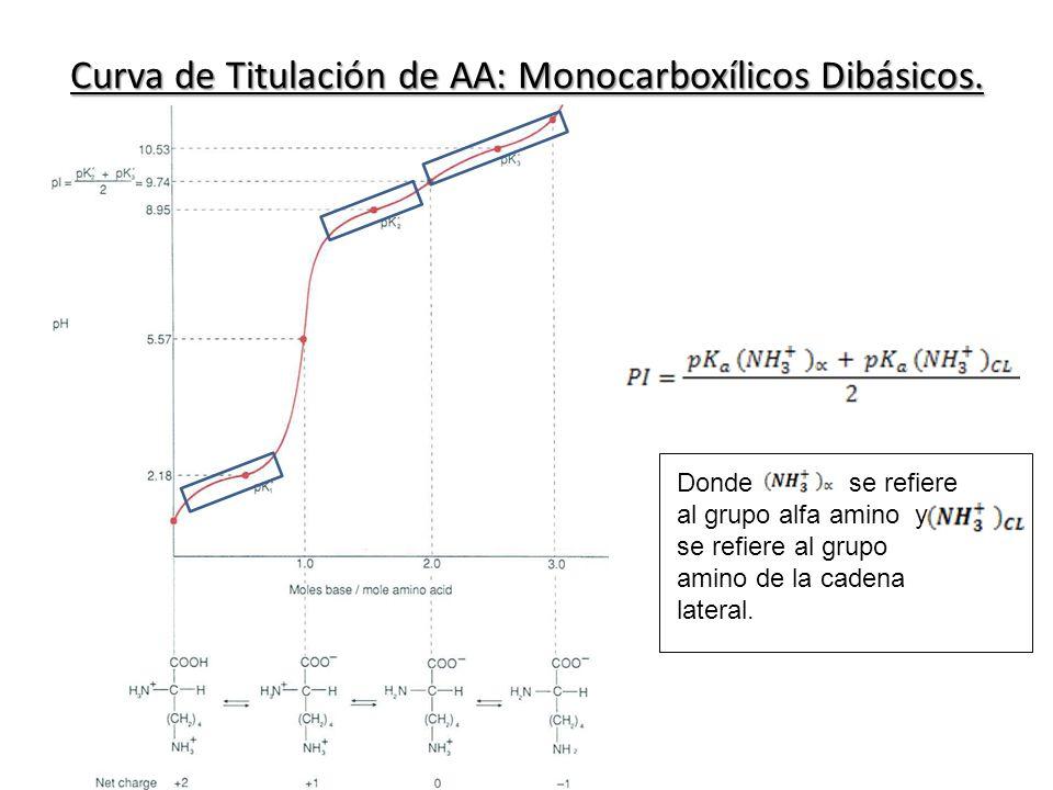Curva de Titulación de AA: Monocarboxílicos Dibásicos. Donde se refiere al grupo alfa amino y se refiere al grupo amino de la cadena lateral.