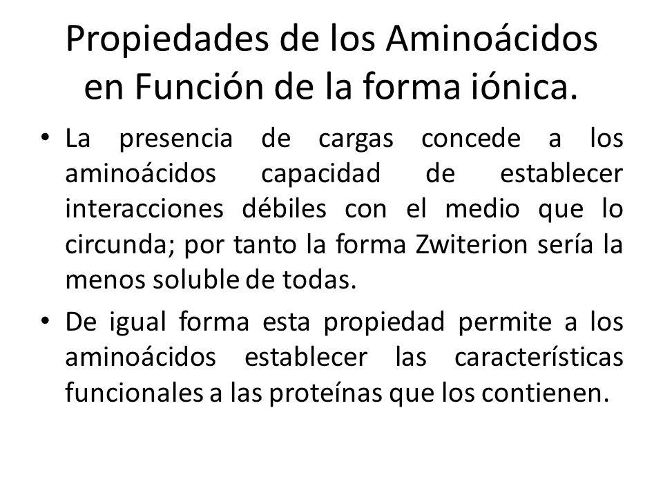 Propiedades de los Aminoácidos en Función de la forma iónica. La presencia de cargas concede a los aminoácidos capacidad de establecer interacciones d