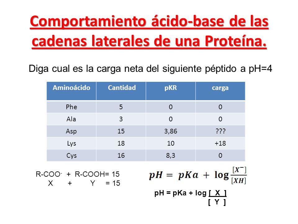 Comportamiento ácido-base de las cadenas laterales de una Proteína. Diga cual es la carga neta del siguiente péptido a pH=4 Aminoácido CantidadpKRcarg