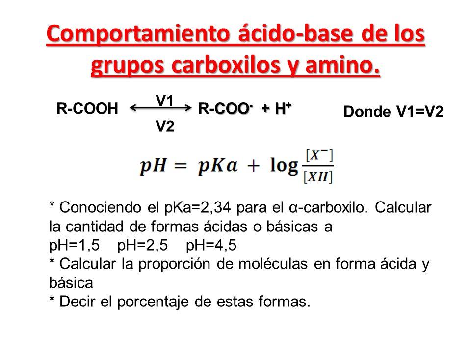 COO - + H + R-COOH R-COO - + H + V1 V2 Donde V1=V2 Comportamiento ácido-base de los grupos carboxilos y amino. * Conociendo el pKa=2,34 para el α-carb
