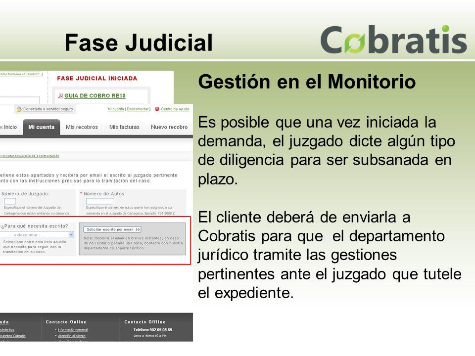 Fase Judicial Gestión en el Monitorio Es posible que una vez iniciada la demanda, el juzgado dicte algún tipo de diligencia para ser subsanada en plazo.