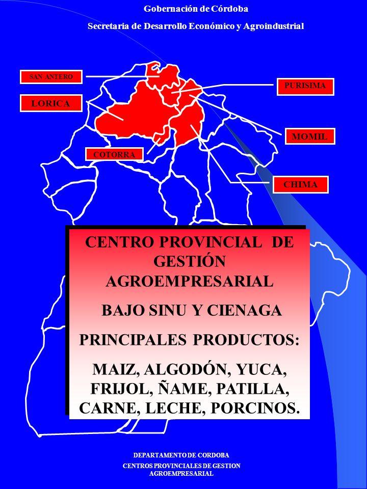 Gobernación de Córdoba Secretaria de Desarrollo Económico y Agroindustrial DEPARTAMENTO DE CORDOBA CENTROS PROVINCIALES DE GESTION AGROEMPRESARIAL CENTRO PROVINCIAL DE GESTIÓN AGROEMPRESARIAL BAJO SINU Y CIENAGA PRINCIPALES PRODUCTOS: MAIZ, ALGODÓN, YUCA, FRIJOL, ÑAME, PATILLA, CARNE, LECHE, PORCINOS.