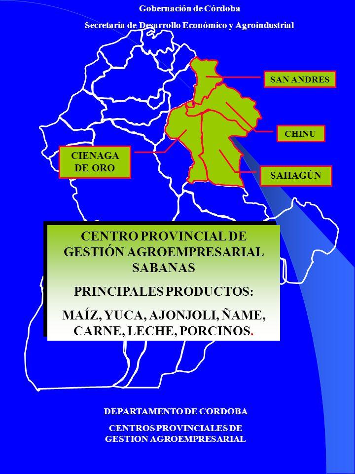 Gobernación de Córdoba Secretaria de Desarrollo Económico y Agroindustrial DEPARTAMENTO DE CORDOBA CENTROS PROVINCIALES DE GESTION AGROEMPRESARIAL CENTRO PROVINCIAL DE GESTIÓN AGROEMPRESARIAL BAJO SAN JORGE PRINCIPALES PRODUCTOS: ARROZ, MAIZ, CARNE, LECHE CENTRO PROVINCIAL DE GESTIÓN AGROEMPRESARIAL BAJO SAN JORGE PRINCIPALES PRODUCTOS: ARROZ, MAIZ, CARNE, LECHE BUENAVISTA AYAPEL PUEBLO NUEVO PLANETA RICA