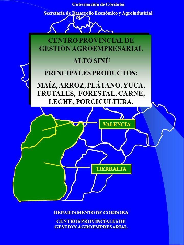 Gobernación de Córdoba Secretaria de Desarrollo Económico y Agroindustrial DEPARTAMENTO DE CORDOBA CENTROS PROVINCIALES DE GESTION AGROEMPRESARIAL CEN