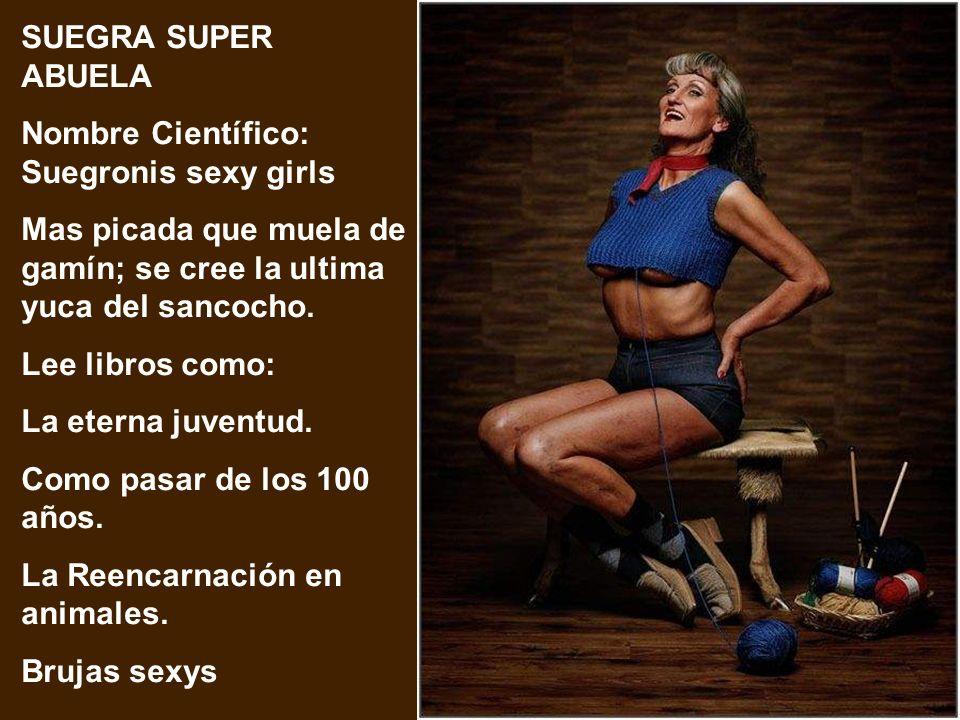 SUEGRA HIPERACTIVA Nombre Científico: Suegronis Gimnastic Va al gimnasio a diario, visita webs de solteros, madruga a culequear en la casa. Para ella,