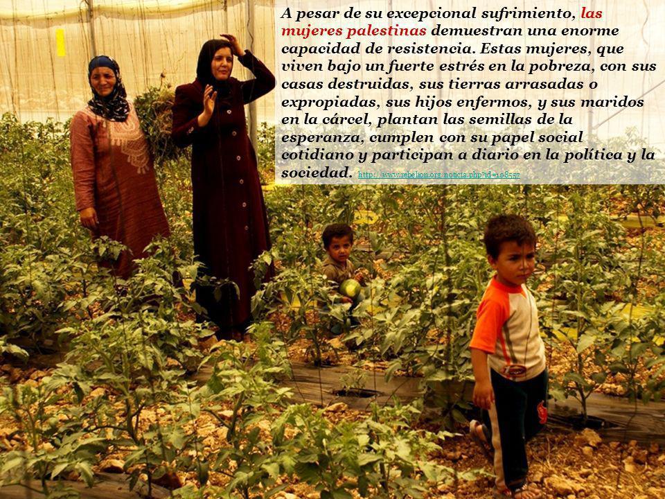 A pesar de su excepcional sufrimiento, las mujeres palestinas demuestran una enorme capacidad de resistencia. Estas mujeres, que viven bajo un fuerte