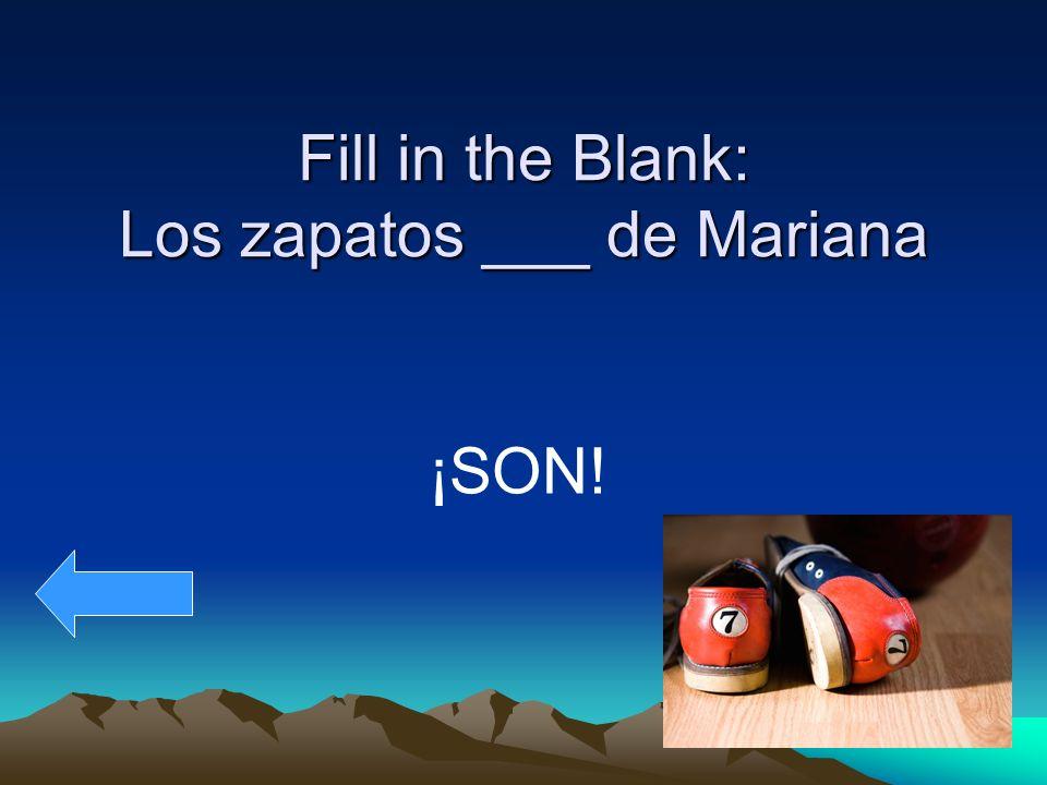 Fill in the Blank: Los zapatos ___ de Mariana ¡SON!