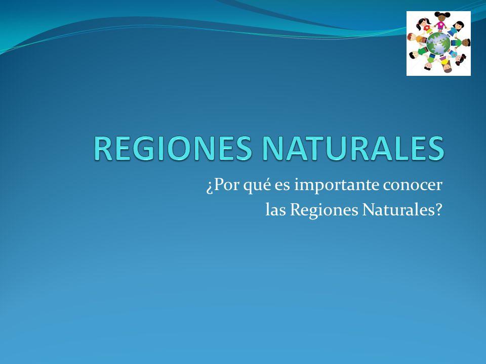¿Por qué es importante conocer las Regiones Naturales?