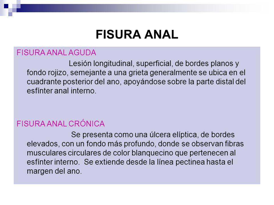 FISURA ANAL FISURA ANAL AGUDA Lesión longitudinal, superficial, de bordes planos y fondo rojizo, semejante a una grieta generalmente se ubica en el cu
