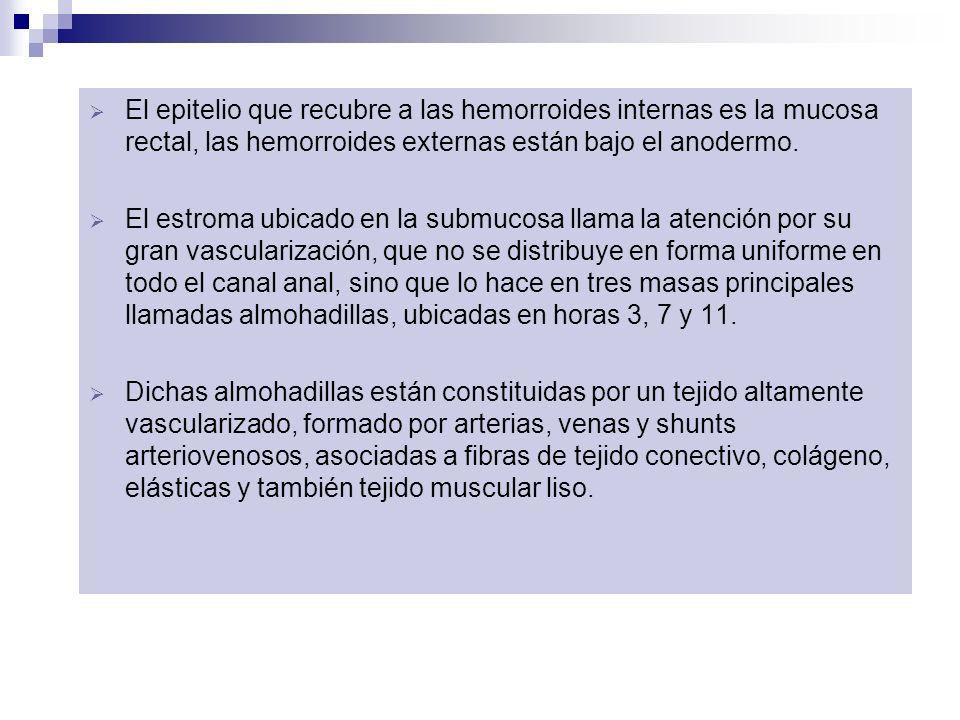 El epitelio que recubre a las hemorroides internas es la mucosa rectal, las hemorroides externas están bajo el anodermo. El estroma ubicado en la subm