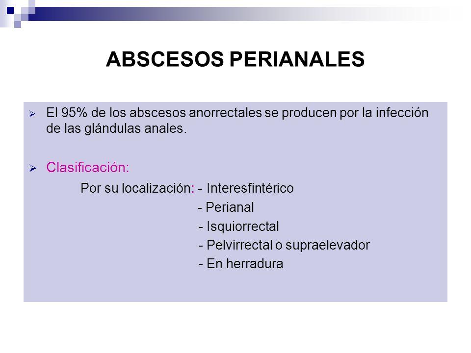 ABSCESOS PERIANALES El 95% de los abscesos anorrectales se producen por la infección de las glándulas anales. Clasificación: Por su localización : - I