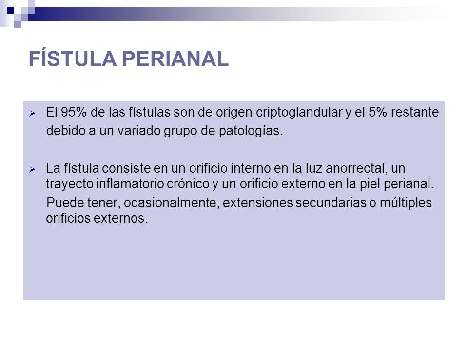 FÍSTULA PERIANAL El 95% de las fístulas son de origen criptoglandular y el 5% restante debido a un variado grupo de patologías. La fístula consiste en