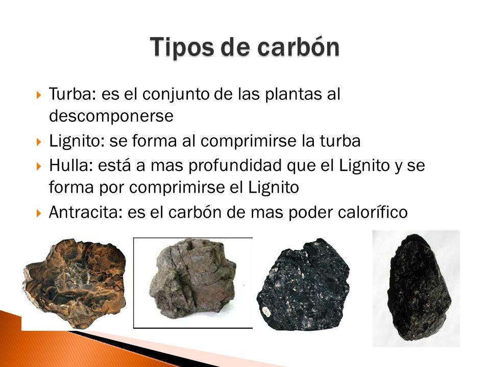 Minas de pozo: cuando los depósitos de carbón están muy profundos Mina de galería: se utiliza cuando está en la ladera de una montaña Cantera: cuando