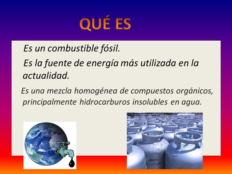 Es un combustible fósil.Es la fuente de energía más utilizada en la actualidad.