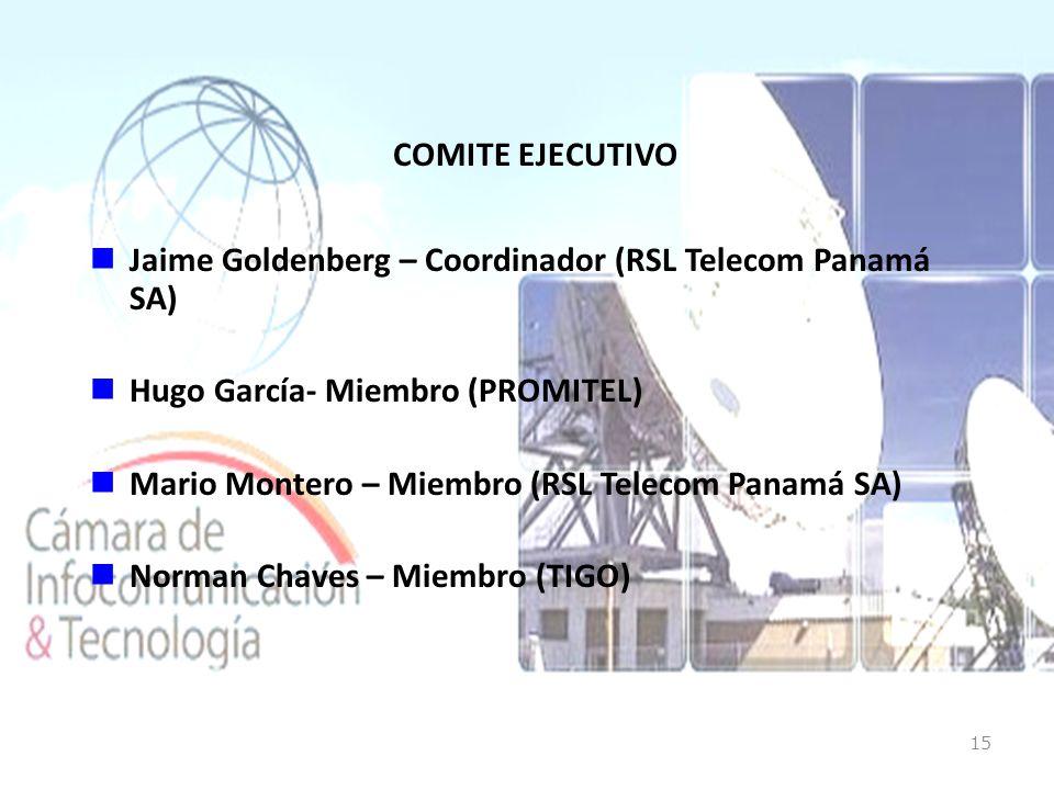 COMITE EJECUTIVO Jaime Goldenberg – Coordinador (RSL Telecom Panamá SA) Hugo García- Miembro (PROMITEL) Mario Montero – Miembro (RSL Telecom Panamá SA) Norman Chaves – Miembro (TIGO) 15