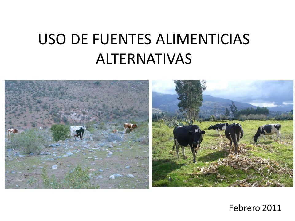 USO DE FUENTES ALIMENTICIAS ALTERNATIVAS Febrero 2011