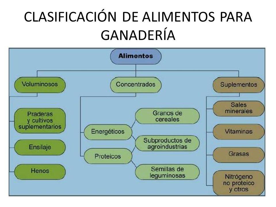CLASIFICACIÓN DE ALIMENTOS PARA GANADERÍA