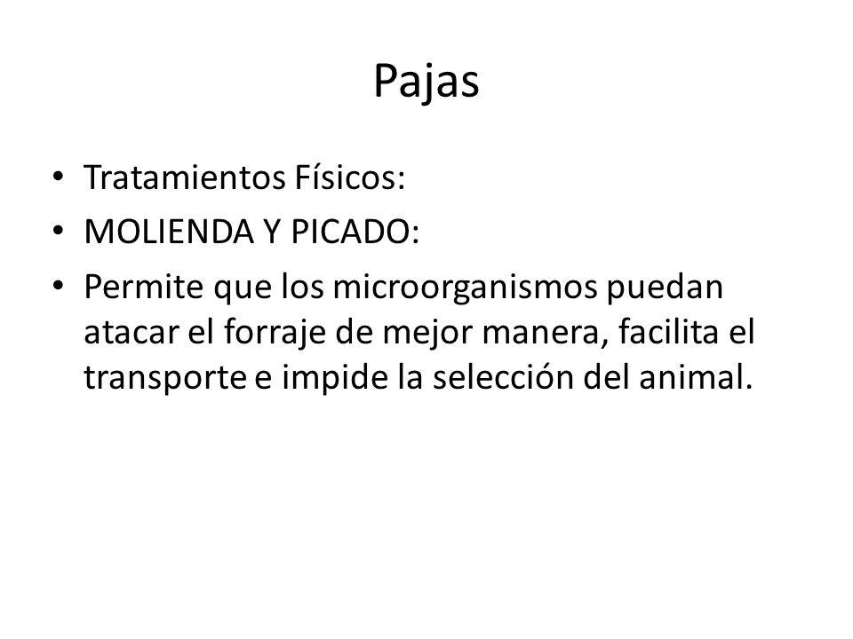 Pajas Tratamientos Físicos: MOLIENDA Y PICADO: Permite que los microorganismos puedan atacar el forraje de mejor manera, facilita el transporte e impide la selección del animal.