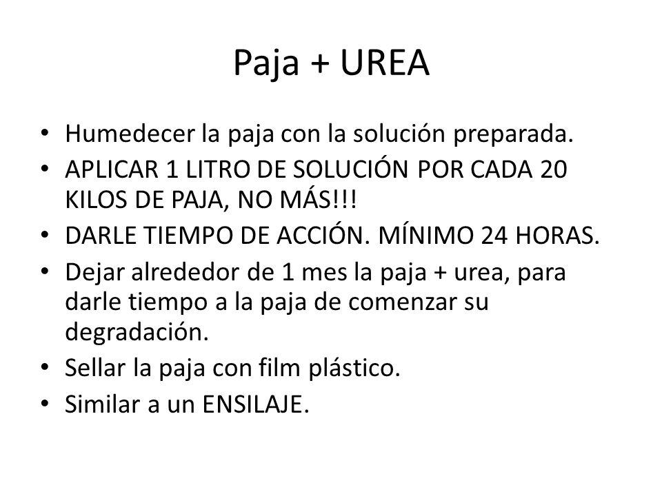 Paja + UREA Humedecer la paja con la solución preparada.