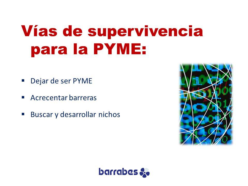 Vías de supervivencia para la PYME: Dejar de ser PYME Acrecentar barreras Buscar y desarrollar nichos