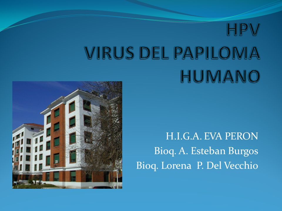 INTRODUCCION HPV Familia papillomaviridae.