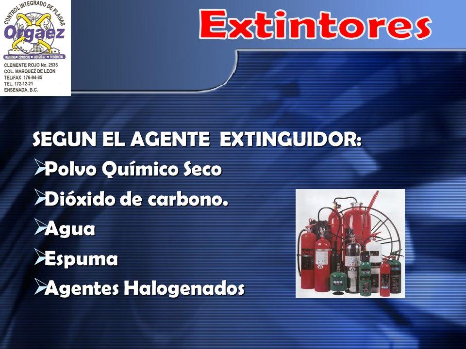 SEGUN EL AGENTE EXTINGUIDOR: Polvo Químico Seco Polvo Químico Seco Dióxido de carbono. Dióxido de carbono. Agua Agua Espuma Espuma Agentes Halogenados